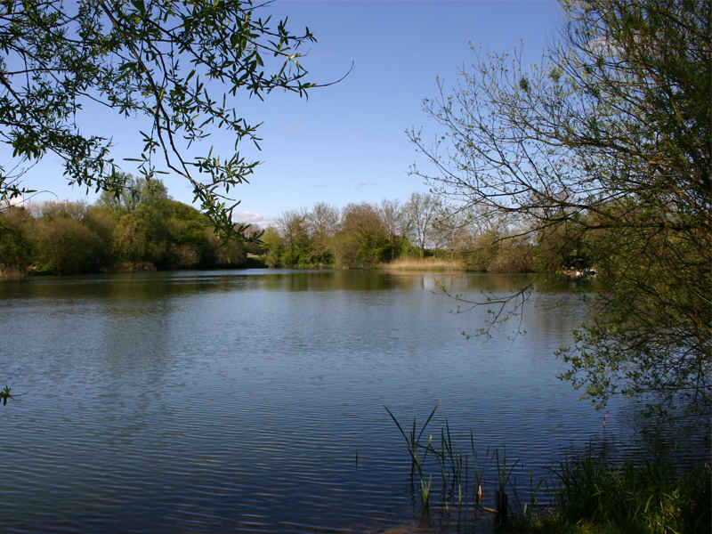 Pond 2 at Emmotland Fishery